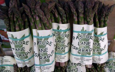 MEET OUR SUPPLIER – Spilman's Asparagus