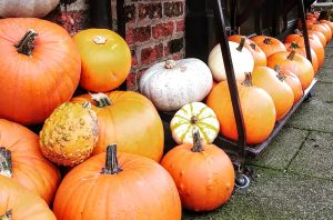 Autumn pumpkins seasonal inspiration